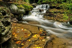 Early autumn colours in Ricketts Glen State Park